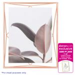 Umbra Prisma Photo Display 8x10 Copper